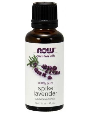 Óleo essencial de Spike Lavender Alfazema 1oz 30ml NOW Foods