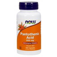 Pantothenic Acid b5 500 mg 100 Capsules NOW Foods